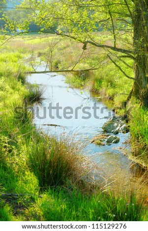 A photo of small river in early spring landscape - stock photo