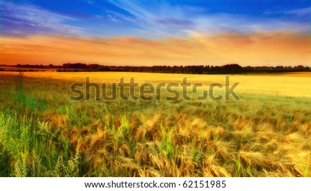 A photo of Sunset in the countryside - stock photo