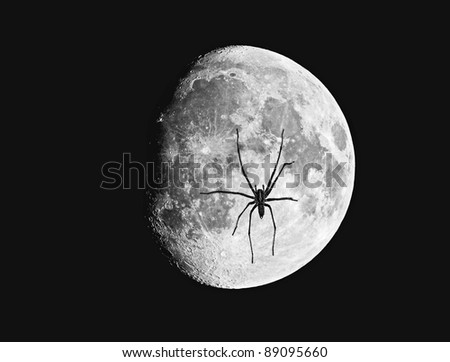A  photo of the moon  under spider attack - stock photo