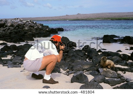 A photographer is allowed to get very close to a baby fur sea lion in the Galapagos