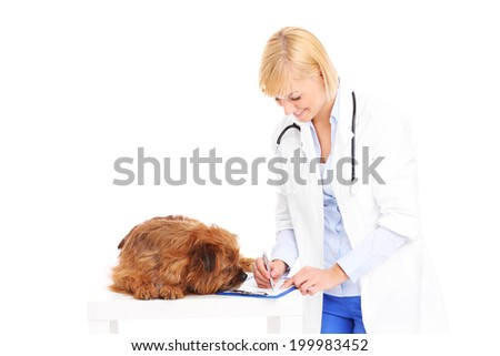 A picture of a vet writing prescription for a dog over white background - stock photo