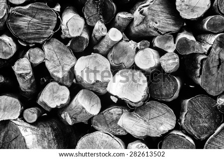 A pile of cut tree for background, Black and white photo. - stock photo