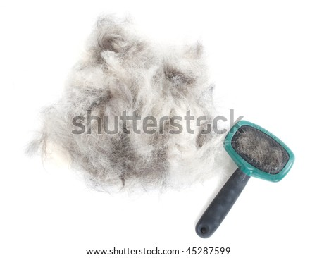 A pile of dog hair (German Shepherd) with a slicker brush. - stock photo