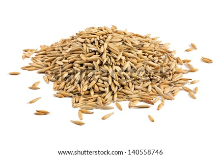 A pile of oat grains isolated on a white background - stock photo