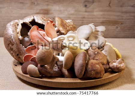 A pile of raw exotic mushrooms on a wooden plate. - stock photo