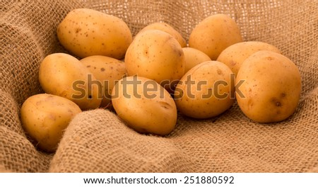 A pile of raw unpeeled potatoes - stock photo