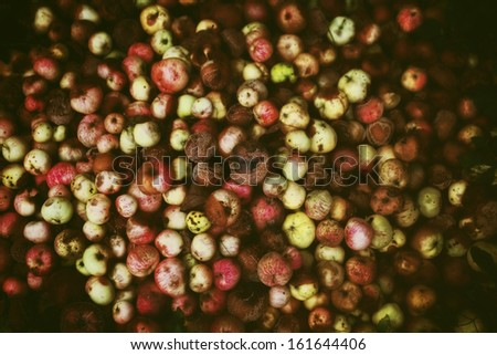 A pile of rotten apples close up