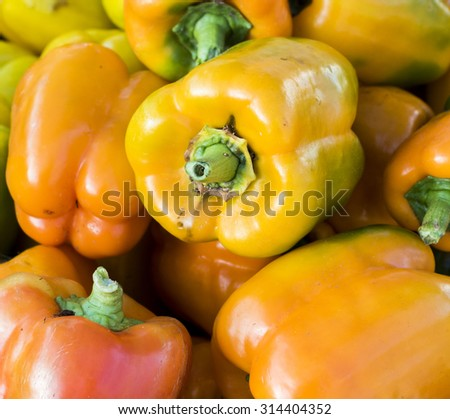 A pile of yellow and orange bell peppers at farm market. - stock photo