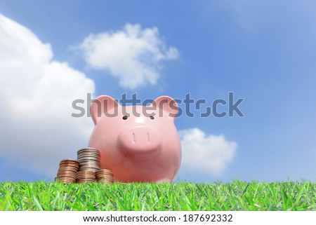A pink piggy bank and money with sky background - stock photo