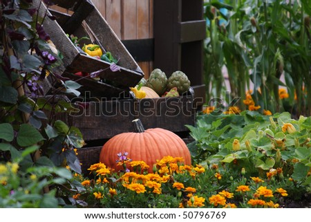 A plastic real looking pumpkin set in a vegetable garden - stock photo