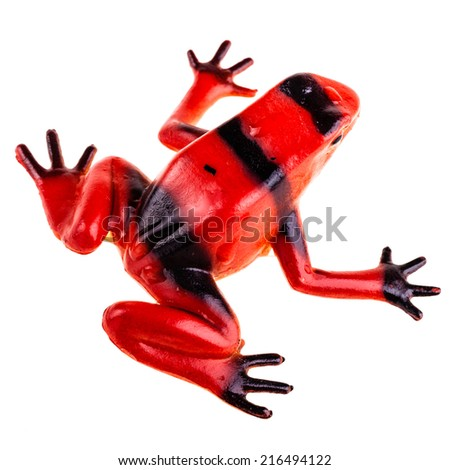 a plastic red frog toy isolated over a pure white background - stock photo