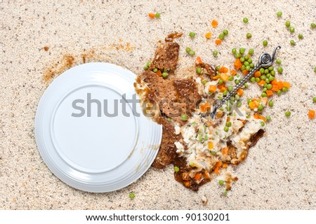 A plate of food including meatloaf, mashed potatoes peas, carrots and gravy spilled on new carpet.