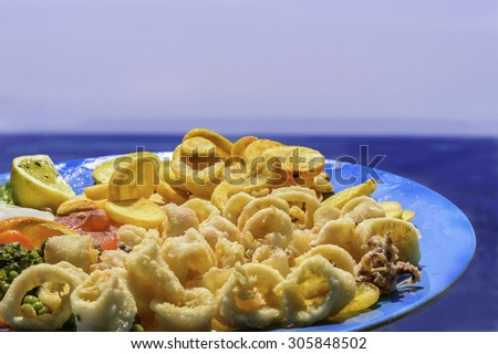 A plate of fried calamari squids with fried potatoes and vegetables over the blue sea and the horizon in the background, a summer meal  - stock photo