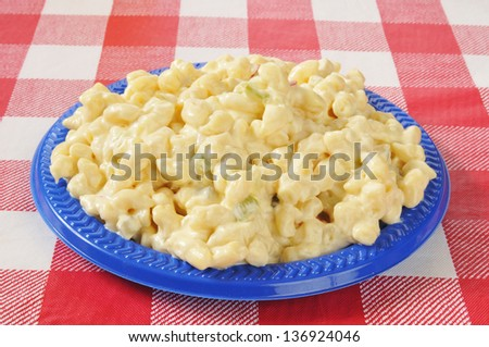 A plate of macaroni salad on a picnic table - stock photo
