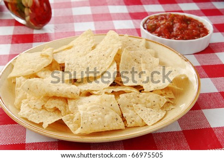 a plate of tortilla chips with salsa on the side