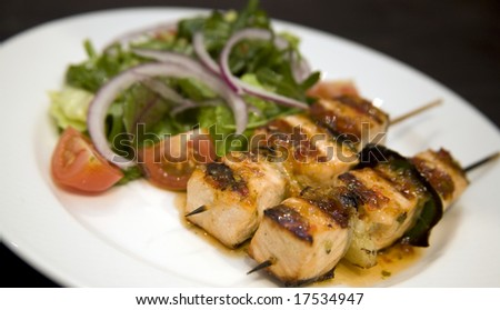 A plate with Salmon on skewers with salad