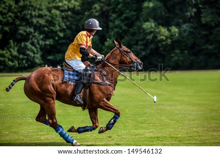 A Polo Player hits the Polo ball with a stick. - stock photo