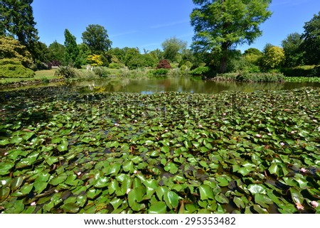 A Pond at an English country estate in summertime.