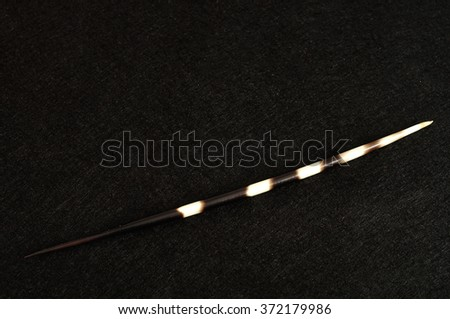 A porcupine spine isolated against a black background - stock photo