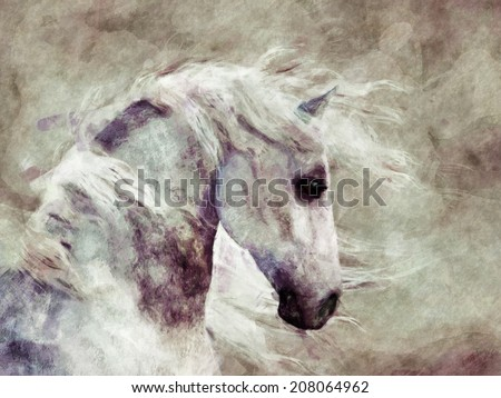 A portrait of a dappled gray horse slightly abstract. - stock photo