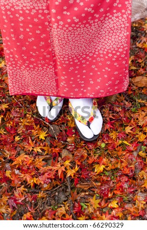 a portrait of japanese kimono woman on the coloured leaves - stock photo