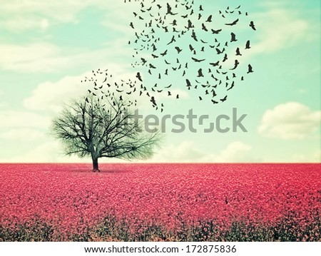 a pretty lanscape with a pink field and a tree with birds flying - stock photo