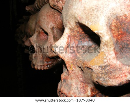 A profile of a row of scary skulls in the dark. - stock photo