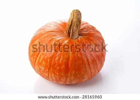 a pumpkin isolated on awhite background - stock photo