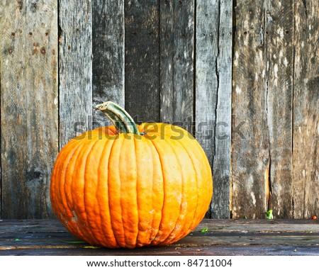 A pumpkin  on a grunge wooden backdrop. - stock photo