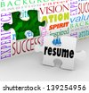 A puzzle piece with the word Resume filling an opening in a wall to illustrate interviewing and getting hired for a job - stock vector