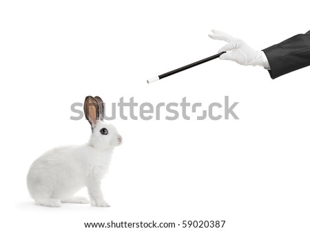 A rabbit and hand holding a magic wand isolated on white background - stock photo