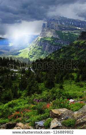 A rain storm at Glacier National Park with wildflowers blooming. - stock photo