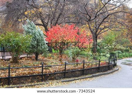 A Rainy day in the Washington Square Park - stock photo