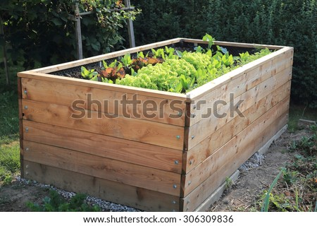 A Raised bed in a garden - stock photo