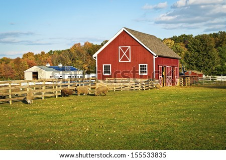 A Red Barn And Farm Animals In This Scenic Autumn View Central New Jersey