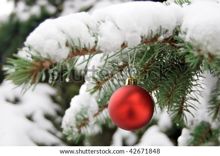 a red bauble on snowy pine - stock photo