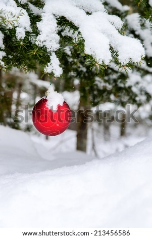 A red Christmas bulb decoration hanging off a spruce tree outside partially covered in snow.  Room for copy space.