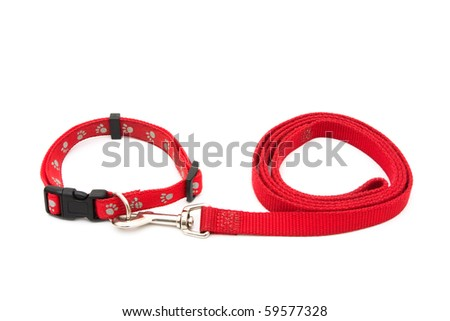 A red dog leash and collar isolated on a white background, Dog Collar and Leash - stock photo