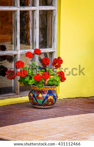 A red potted geranium outside a home in St George's Bermuda. - stock photo