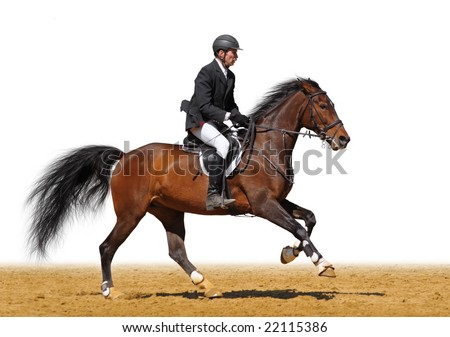 A rider in a show jumping running at full speed - isolated on white