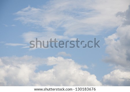 A Ring-billed Gull against a beautiful sky - stock photo