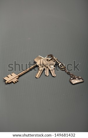 A ring of keys that are designed to be used for multiple purposes