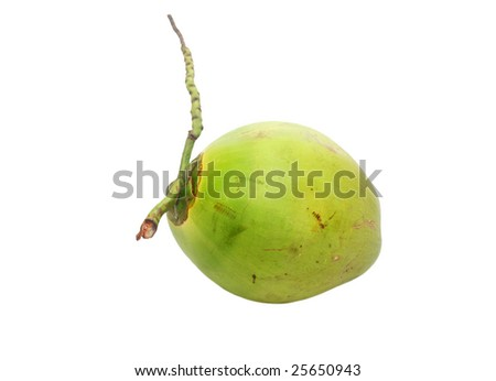 a ripe coconut for drinking - stock photo