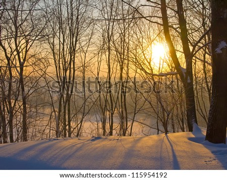 A rising sun in the winter park. Winter fog early in the morning in a clear weather