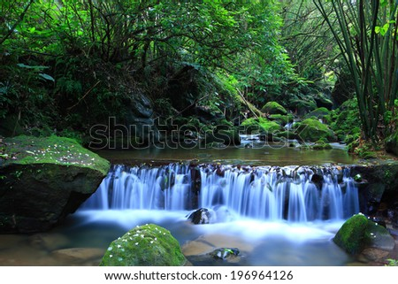 A river with a small waterfall running through the forest. - stock photo