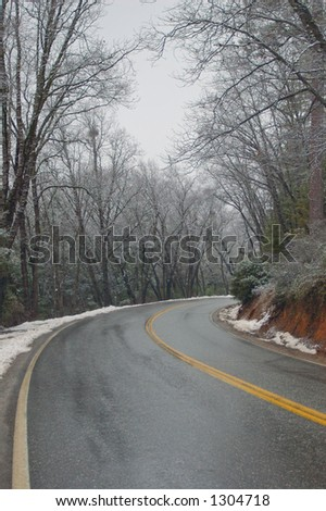 a road on a snowy day in the forest
