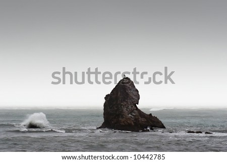 A rock is pounded by waves and wind in Nelson, New Zealand - stock photo