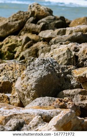 A rock jetty at a Florida beach - stock photo