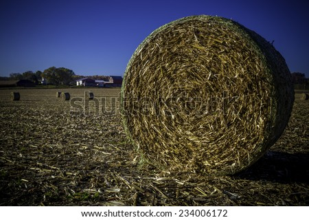 A round hay bale in a field - stock photo