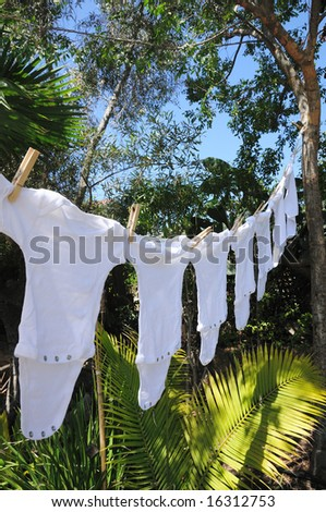 A row of baby onesies hanging from a clothesline by clothespins in a palm garden.
